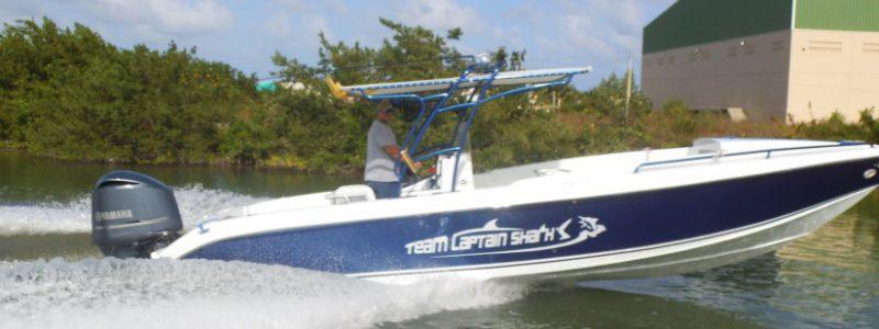 Team Captain Shark's Blue 28 Wahoo