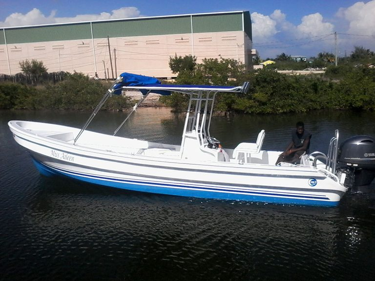 Captain Sharks Luna 25ft Limited Boat - Miss Aileen