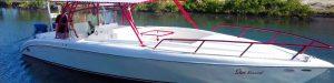 Star Kiss - Dorado 34ft Boat made by Captain Sharks Boatyard