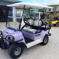 purple-xrt-golf-cart-lisa-01