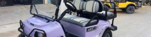 Brand New EFI XRT850 Club Car Golf Cart purchased at Captain Sharks