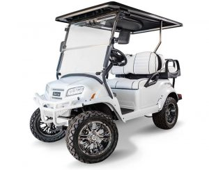 Club Car Onward Snow Storm Special Edition Golf Cart