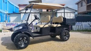 Used 4 Passenger Precedent Golf Cart Customized